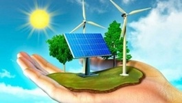 На базе ЭКСПО будет создан международный центр «зеленой экономики»