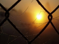 Депутаты озабочены судьбой освобождающихся из мест лишения свободы