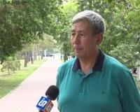 Павлодарцы жалуются на «второе нашествие» гнуса