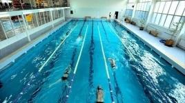 В Бельгии предложили запретить мигрантам посещать бассейн