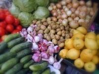 Аграрии Павлодарской области привезли на столичную ярмарку 750 тонн продукции