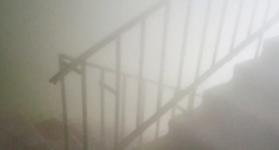 В Прииртышье потравка комаров стала причиной вызова пожарных