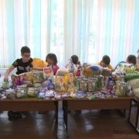 Павлодарские школьники собрали несколько десятков килограммов корма для питомцев единственного в регионе приюта