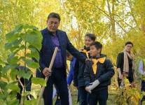 Аким области договорился встретиться со школьником через четыре года возле высаженного им дерева
