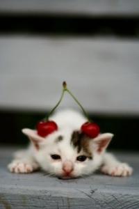 С Днём Рождения, cherry-oks!!!