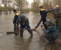 В водоемы Павлодарской области начали выпускать мальков ценной рыбы