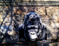 Стены старого здания на территории павлодарского колледжа украсили уличные художники