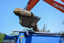 С начала года в Павлодаре спилили 1147 деревьев