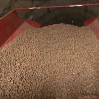 60 тонн картофеля раздал актогайский предприниматель многодетным и малообеспеченным семьям