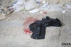 В Актау бомжи резали собак на мясо на глазах у детей