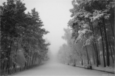 Меня больше цепляют ночь, туман и сильный мороз