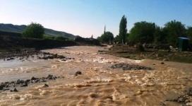 12 дворовых участков затопило в Алматинской области