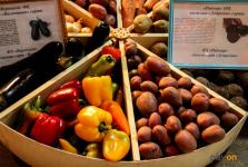 Павлодарские овощи и арбузы будут продавать по 70 тенге за кило на ярмарке в столице