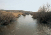 Река Ембулатовка представляет угрозу экологии ЗКО