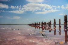К селу Коряковка, популярному из-за розового озера, отремонтируют дорогу