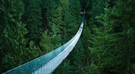 Головокружительный стеклянный мост появится в горах Алматы