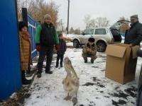 Спасенный в Иртышском районе пеликан едет в Павлодар