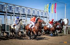 В Павлодаре в День Победы пройдет турнир по конным видам спорта