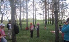 Школьные лесничества помогают сохранить уникальные сосновые боры в Павлодарской области