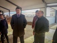 В Павлодарской области до конца года откроют шесть молочно-товарных ферм