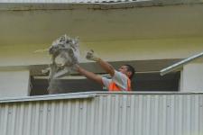 В Павлодаре оштрафовали рабочего, выбрасывавшего строительный мусор с балкона