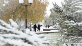 Метель и гололед прогнозируют синоптики в Казахстане 15 января