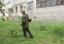 Павлодарским КСК напомнили о необходимости покоса травы возле многоэтажных домов