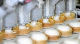 Мороженое из кумыса представят в Канаде павлодарские студенты