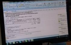 В Казахстане планируют создать программное обеспечение для защиты компьютеров