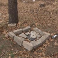 Кладбище домашних животных снесли в Павлодаре