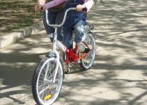 Жительница Павлодарской области избила родственницу из-за детского велосипеда