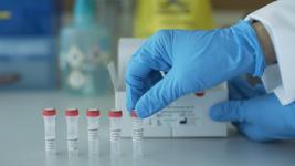Десять новых случаев заражения COVID-19 выявлено в Павлодарской области