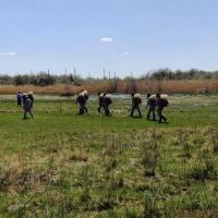 В Павлодаре против гнуса обработали уже 3,5 тысячи гектаров водоемов