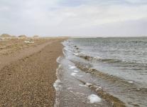 Курорт Маралды в Павлодарской области готов принять первых отдыхающих 1 июня