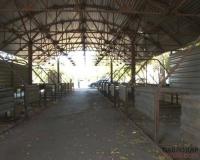 В Павлодаре заброшенный базар по улице Сатпаева вновь выставили на аукцион