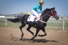 1 мая в Павлодаре состоятся скачки
