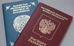 В Павлодарской области в прошлом году выявили 50 человек с двойным гражданством