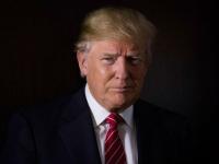 Трамп подтвердил желание вывести американские войска из Сирии