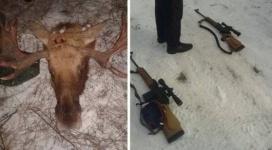"""Задержанный за незаконную охоту глава службы охраны """"Ертiс орманы"""" продолжает работать"""