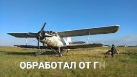Перед выпускным в Павлодаре набережную от гнуса обрабатывают с помощью самолета «АН-2»