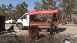 Не мусорить на кладбище просят павлодарцев коммунальщики
