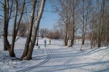 Погода в Павлодаре на выходные
