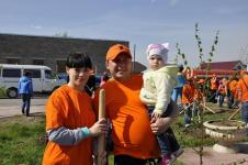 Сто молодых деревьев появилось в Аксу благодаря работникам завода ферросплавов