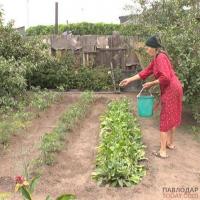 Жители микрорайона МДС жалуются на неработающий летний водопровод