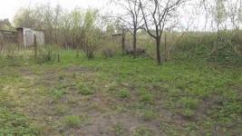 Два дачных участка в Строителе оценили почти в 12 миллионов тенге