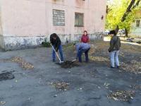 Жители домов Короленко 2, 4, 6 благодарят депутата своего округа
