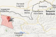 В киргизском селе ввели карантин из-за вспышки сибирской язвы