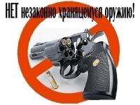 Павлодарские полицейские объявили о начале выкупа у населения незаконно хранящегося оружия