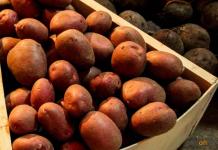 Картофель из стабфонда в павлодарских социальных магазинах продается дешевле 100 тенге