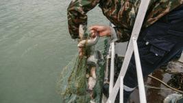 Егери занимались браконьерством в Павлодарской области